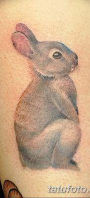 фото тату заяц от 02.09.2017 №060 – tatoos hare – tatufoto.com