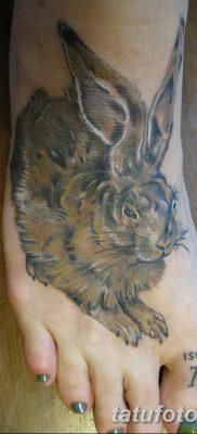 фото тату заяц от 02.09.2017 №070 – tatoos hare – tatufoto.com