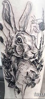 фото тату заяц от 02.09.2017 №071 – tatoos hare – tatufoto.com