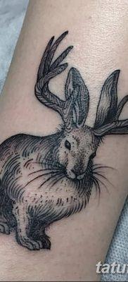 фото тату заяц от 02.09.2017 №075 – tatoos hare – tatufoto.com