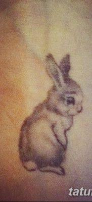 фото тату заяц от 02.09.2017 №076 – tatoos hare – tatufoto.com