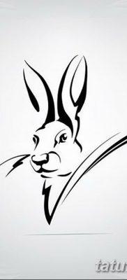 фото тату заяц от 02.09.2017 №079 – tatoos hare – tatufoto.com