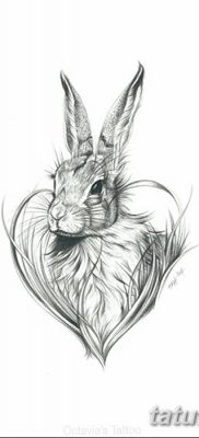 фото тату заяц от 02.09.2017 №083 – tatoos hare – tatufoto.com
