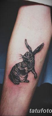 фото тату заяц от 02.09.2017 №084 – tatoos hare – tatufoto.com
