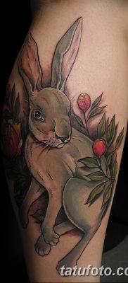 фото тату заяц от 02.09.2017 №093 – tatoos hare – tatufoto.com