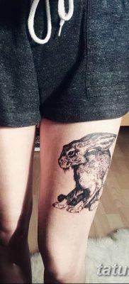 фото тату заяц от 02.09.2017 №097 – tatoos hare – tatufoto.com