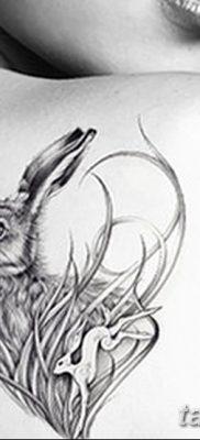 фото тату заяц от 02.09.2017 №098 – tatoos hare – tatufoto.com