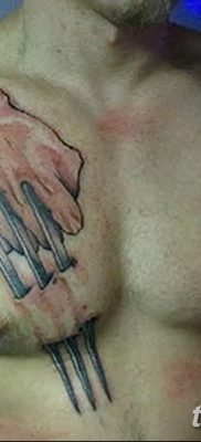 фото тату когти от 13.09.2017 №002 – tattoo claws – tatufoto.com
