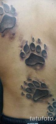 фото тату когти от 13.09.2017 №003 – tattoo claws – tatufoto.com