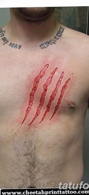 фото тату когти от 13.09.2017 №006 – tattoo claws – tatufoto.com