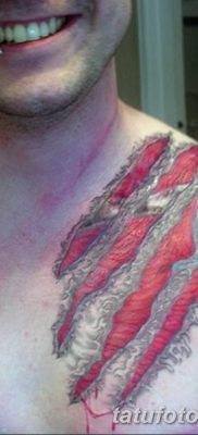 фото тату когти от 13.09.2017 №052 – tattoo claws – tatufoto.com