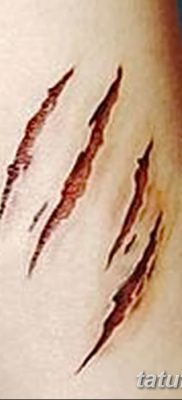 фото тату когти от 13.09.2017 №058 – tattoo claws – tatufoto.com