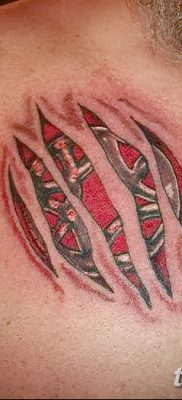 фото тату когти от 13.09.2017 №083 – tattoo claws – tatufoto.com