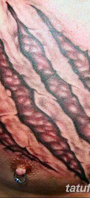 фото тату когти от 13.09.2017 №114 – tattoo claws – tatufoto.com