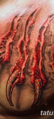 фото тату когти от 13.09.2017 №125 – tattoo claws – tatufoto.com