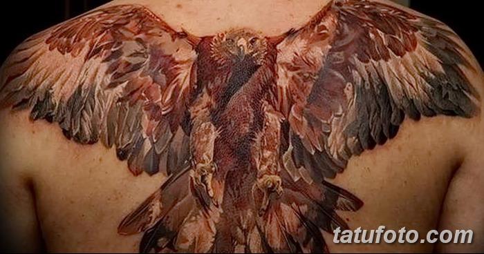 фото тату коршун птица от 12.09.2017 №028 - tattoo kite bird - tatufoto.com