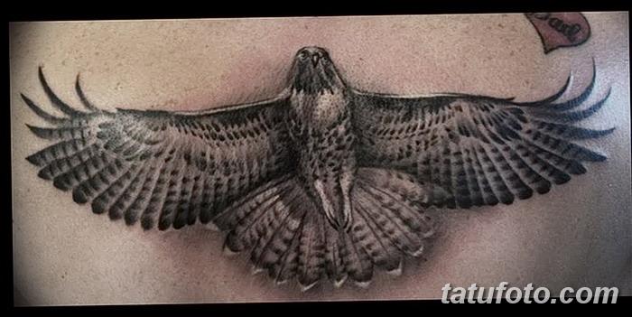фото тату коршун птица от 12.09.2017 №038 - tattoo kite bird - tatufoto.com