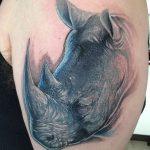 фото тату носорог от 29.09.2017 №002 - rhino tattoo - tatufoto.com