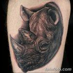 фото тату носорог от 29.09.2017 №007 - rhino tattoo - tatufoto.com
