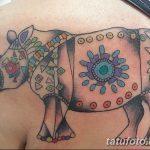 фото тату носорог от 29.09.2017 №010 - rhino tattoo - tatufoto.com