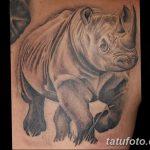 фото тату носорог от 29.09.2017 №032 - rhino tattoo - tatufoto.com