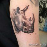 фото тату носорог от 29.09.2017 №034 - rhino tattoo - tatufoto.com