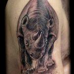 фото тату носорог от 29.09.2017 №038 - rhino tattoo - tatufoto.com