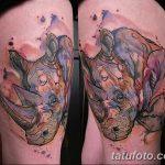 фото тату носорог от 29.09.2017 №047 - rhino tattoo - tatufoto.com