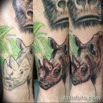 фото тату носорог от 29.09.2017 №062 - rhino tattoo - tatufoto.com