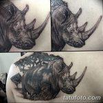 фото тату носорог от 29.09.2017 №063 - rhino tattoo - tatufoto.com
