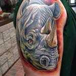 фото тату носорог от 29.09.2017 №072 - rhino tattoo - tatufoto.com