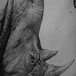 фото тату носорог от 29.09.2017 №077 - rhino tattoo - tatufoto.com
