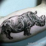 фото тату носорог от 29.09.2017 №080 - rhino tattoo - tatufoto.com