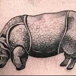 фото тату носорог от 29.09.2017 №082 - rhino tattoo - tatufoto.com