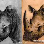 фото тату носорог от 29.09.2017 №086 - rhino tattoo - tatufoto.com