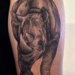 фото тату носорог от 29.09.2017 №097 - rhino tattoo - tatufoto.com