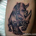 фото тату носорог от 29.09.2017 №099 - rhino tattoo - tatufoto.com