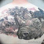 фото тату носорог от 29.09.2017 №105 - rhino tattoo - tatufoto.com