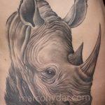 фото тату носорог от 29.09.2017 №111 - rhino tattoo - tatufoto.com