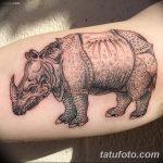 фото тату носорог от 29.09.2017 №115 - rhino tattoo - tatufoto.com