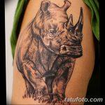 фото тату носорог от 29.09.2017 №121 - rhino tattoo - tatufoto.com