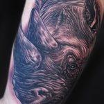 фото тату носорог от 29.09.2017 №129 - rhino tattoo - tatufoto.com