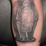 фото тату носорог от 29.09.2017 №131 - rhino tattoo - tatufoto.com