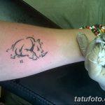 фото тату носорог от 29.09.2017 №142 - rhino tattoo - tatufoto.com