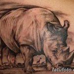 фото тату носорог от 29.09.2017 №144 - rhino tattoo - tatufoto.com