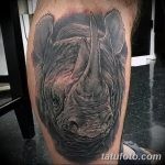 фото тату носорог от 29.09.2017 №153 - rhino tattoo - tatufoto.com