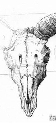 фото тату череп козы от 20.09.2017 №036 – goat skull tattoo – tatufoto.com