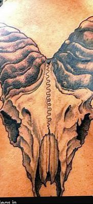 фото тату череп козы от 20.09.2017 №042 – goat skull tattoo – tatufoto.com