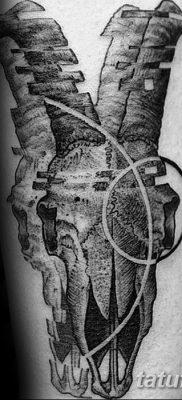 фото тату череп козы от 20.09.2017 №050 – goat skull tattoo – tatufoto.com