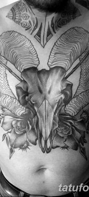 фото тату череп козы от 20.09.2017 №064 – goat skull tattoo – tatufoto.com